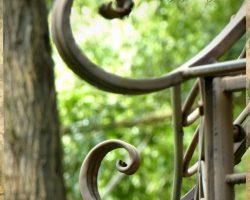 Garten Seminarhaus Klyngenberg Mecklenburg 1 - Impressionen