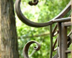 Garten Seminarhaus Klyngenberg Mecklenburg - Impressionen