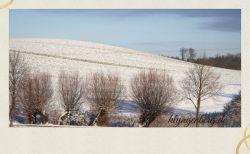 Bergfeld Klaber im Winter 2 - Märchenland Mecklenburg